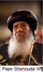 Pape Shenouda III.PNG